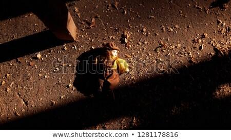 gry · dla · dzieci · piętrze · opieki · wolna · dziewczyna - zdjęcia stock © ilona75
