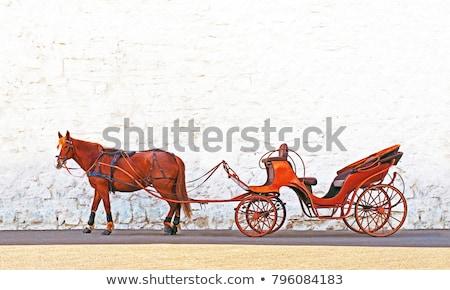Ló rajzolt fuvar szelektív fókusz retro képzés Stock fotó © stevanovicigor