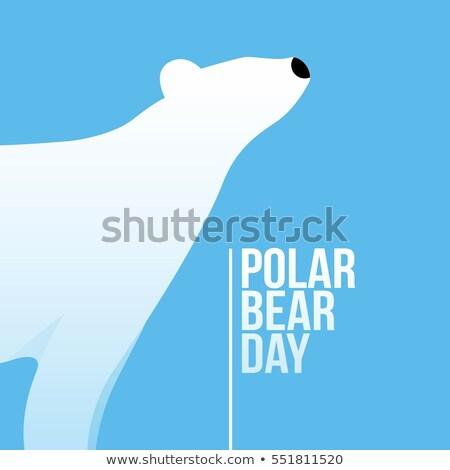Tarjeta de felicitación oso polar día vacaciones internacional feliz Foto stock © Olena