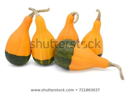 Groep vijf oranje groene vier Stockfoto © sarahdoow