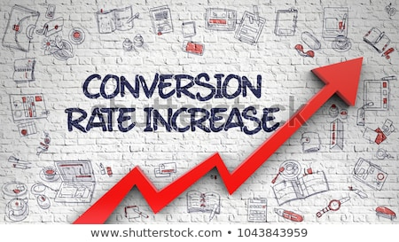Conversion Rate Optimization Drawn on Brick Wall.  Stock photo © tashatuvango
