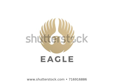Eagle and circle emblem template. Hawk symbol. Vector illustrati Stock photo © MaryValery
