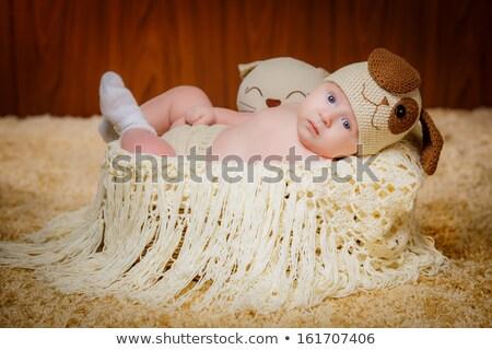 A baby boy in a wickerwork basket Stock photo © IS2