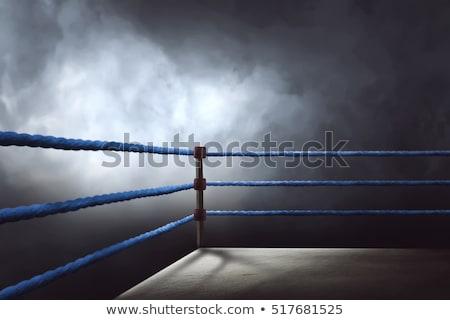Boxing anello fitness studio corde servizio Foto d'archivio © wavebreak_media