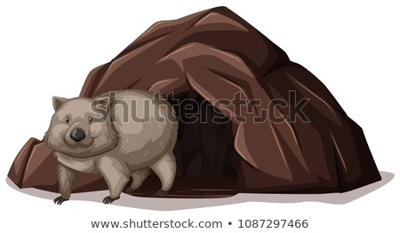 Wombat Walking out off the Cave Stock photo © bluering