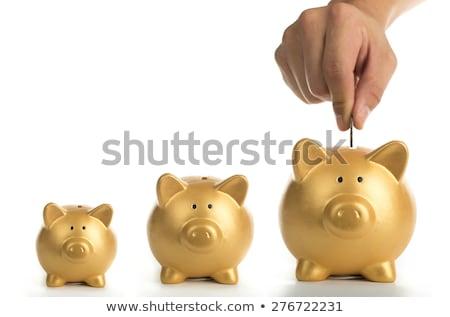 Wzrost oszczędności działalności metal rynku czas Zdjęcia stock © rufous