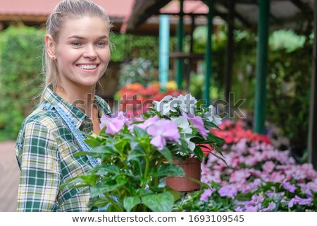 young woman working with spring flowers in the greenhouse stock photo © boggy