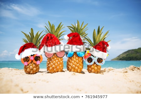 Christmas on Beach, Holiday in Summer Celebrate Stock photo © robuart