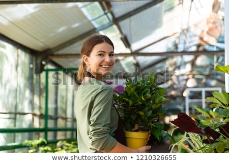 Image of pleased woman gardener 20s wearing apron standing with  Stock photo © deandrobot