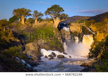 川 ナミビア 北方 アンゴラ 国境 ストックフォト © artush