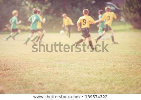 Children at the football tournament. Soccer game for kids Stock photo © matimix