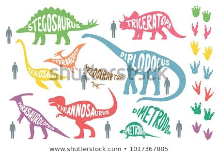 Dinosauro verde zampa stampa isolato bianco Foto d'archivio © hittoon