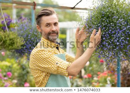 Bem sucedido jardineiro avental em pé pequeno Foto stock © pressmaster