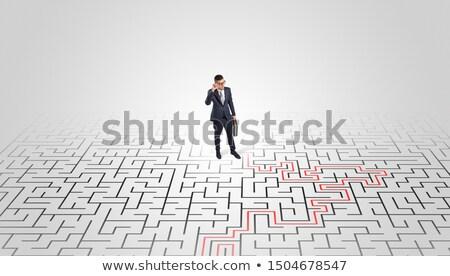 Jungen Unternehmer stehen Mitte Labyrinth Lösung Stock foto © ra2studio