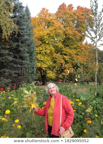 Woman standing on front of an autumn tree with colorful leaves Stock photo © Kzenon