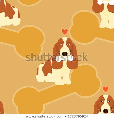Basset Hound Dog Breed Cartoon Retro Drawing Stock photo © patrimonio