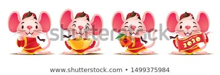 Ano novo chinês bonitinho rato traje cartão conjunto Foto stock © cienpies