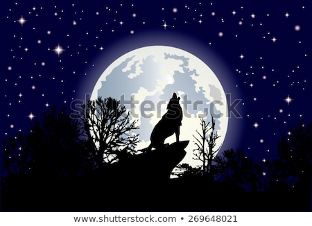 Howling Wolf in Winter Landscape Forest Vector Stock photo © robuart