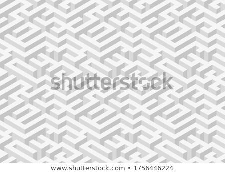 Szürke izometrikus bonyolult labirintus kilátás siker Stock fotó © evgeny89