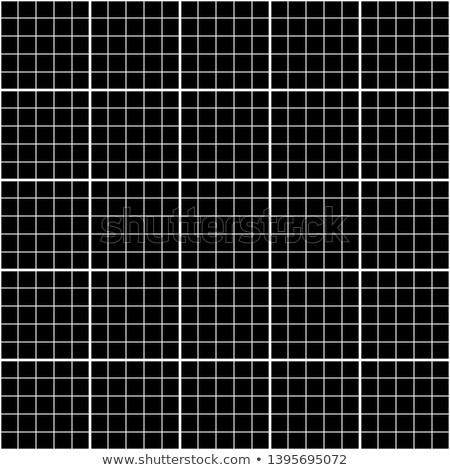 Cinque millimetro bianco grafico griglia nero Foto d'archivio © evgeny89