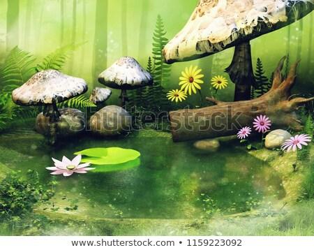 panorama · stream · fiori · fiore · cielo · nubi - foto d'archivio © ansonstock
