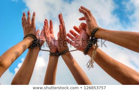 három · emberi · kezek · felfelé · együtt · kötél - stock fotó © andreykr