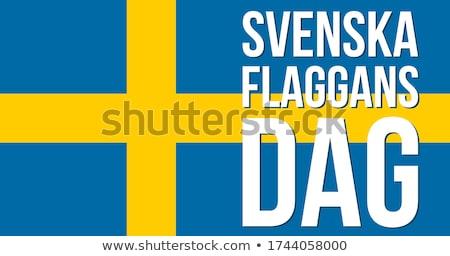Евросоюз карта флаг Европа иконки Сток-фото © gaudiums