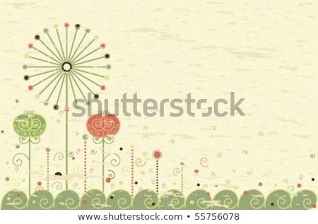 retro · kártya · pitypang · üdvözlőlap · virágok · szoba - stock fotó © beholdereye