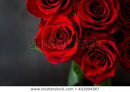 Woman with a Bunch of Red Roses. Stock photo © feverpitch