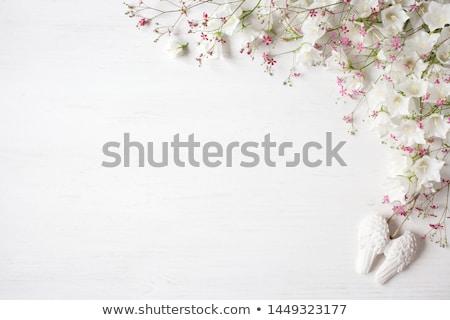 flowers and angel Stock photo © Marcogovel