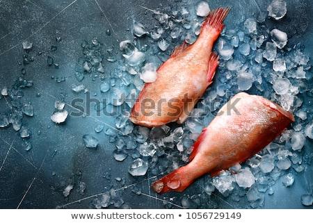 Сток-фото: Ice · Cube · рыбы · изолированный · белый · воды · продовольствие