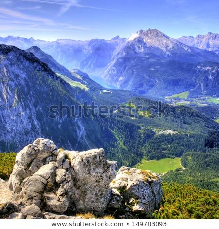 Hegy díszlet Alpok égbolt erdő nap Stock fotó © nailiaschwarz