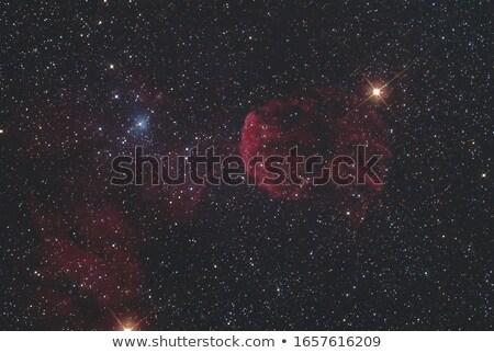 denizanası · nebula · güneş · ışık · mavi - stok fotoğraf © rwittich