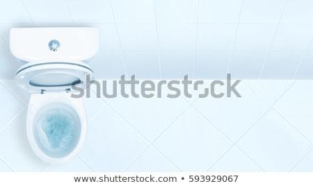 Toilet bowl flush. Stock photo © snyfer