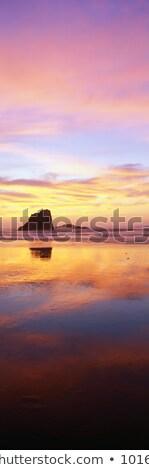 海 · 海岸 · パノラマ · 半島 - ストックフォト © latent