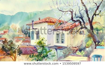 Turks huizen stad boom gebouw landschap Stockfoto © kravcs