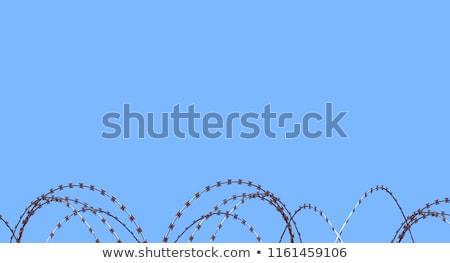 Borotva drót felső kerítés éles acél Stock fotó © juniart