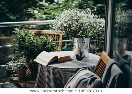vazio · cadeiras · casamento · reunião · natureza - foto stock © ivonnewierink