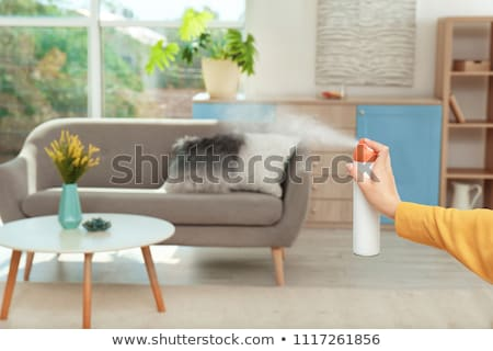 Air Freshener  Stock photo © dezign56