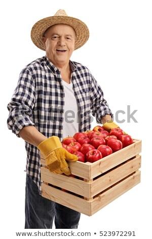 White farmer glove isolated  stock photo © hin255