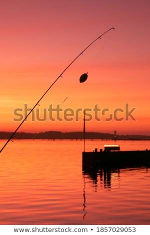 Coast line and marina at the baltic sea Stock photo © remik44992