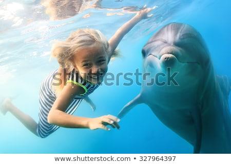 Drôle dauphins illustration océan poissons nature Photo stock © adrenalina