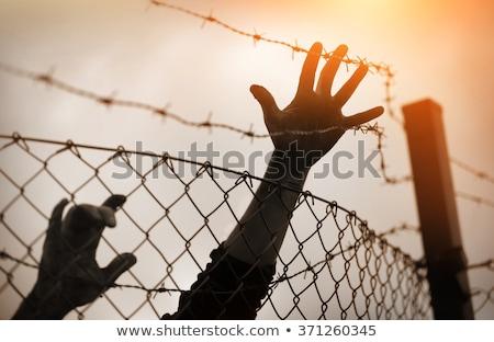Menekült kéz drót keret háború Stock fotó © ajfilgud