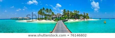 sand isle beach sky in indian ocean  Stock photo © lkpro