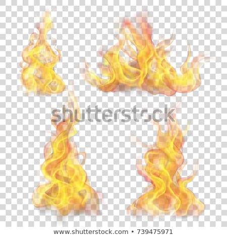 fogo · chamas · símbolo · conjunto · laranja · poder - foto stock © netkov1