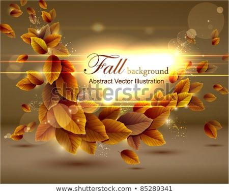bright autumn frame eps 10 stock photo © beholdereye