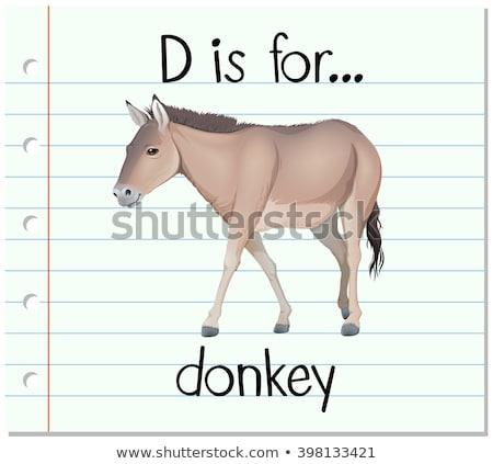 Letter d ezel illustratie achtergrond kunst onderwijs Stockfoto © bluering