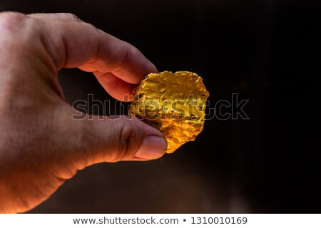 gold nugget in hand  Stock photo © OleksandrO