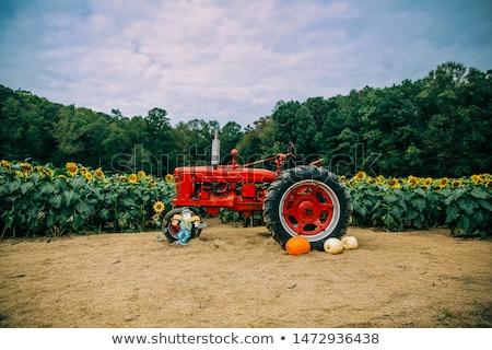 veld · agrarisch · machines · Rood · trekker · hemel - stockfoto © njnightsky