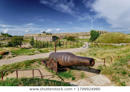 Old cannon Stock photo © 5xinc